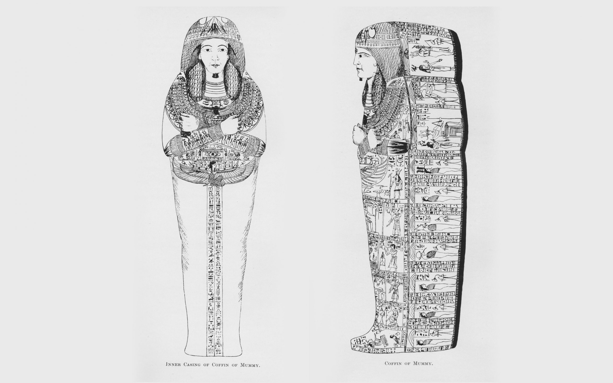 A picture of the Mummy of the priest Nesyamun, drawn by curator Henry Denny in 1828.